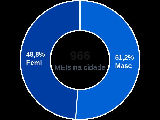 Gênero de MEIs na cidade de Minaçu