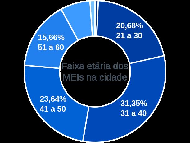 Faixa etária de MEIs na cidade de Mineiros