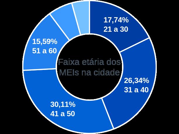 Faixa etária de MEIs na cidade de Monte Alegre de Goiás