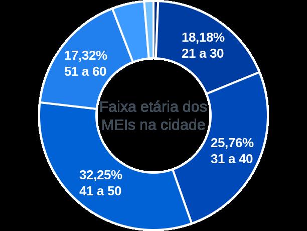 Faixa etária de MEIs na cidade de Montes Claros de Goiás