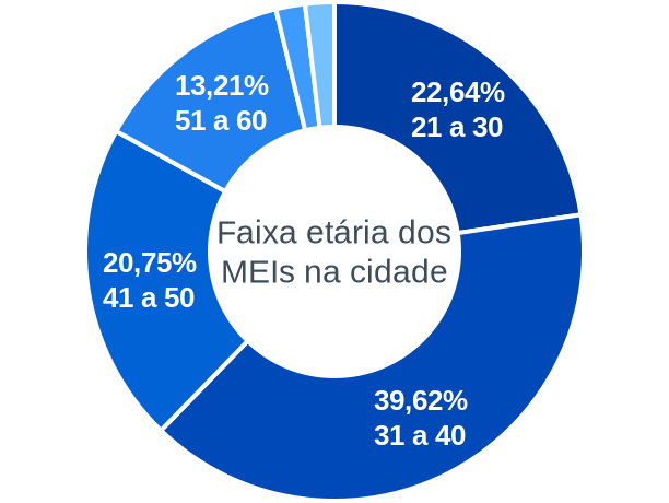 Faixa etária de MEIs na cidade de Morro Agudo de Goiás
