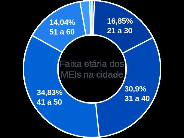 Faixa etária de MEIs na cidade de Novo Planalto