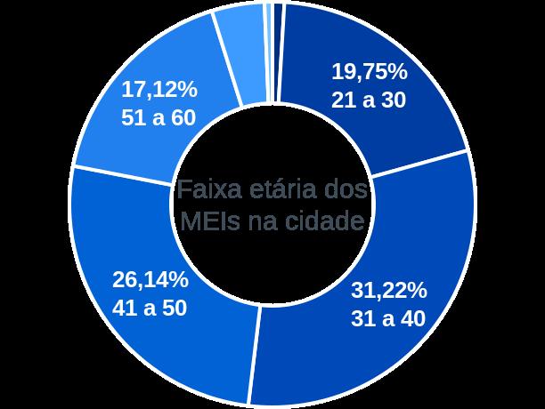 Faixa etária de MEIs na cidade de Palmeiras de Goiás