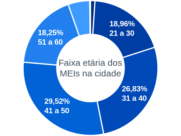 Faixa etária de MEIs na cidade de Petrolina de Goiás