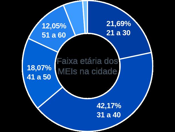 Faixa etária de MEIs na cidade de Pilar de Goiás
