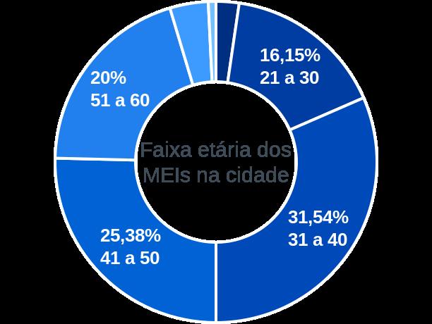 Faixa etária de MEIs na cidade de Santa Cruz de Goiás