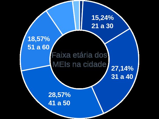 Faixa etária de MEIs na cidade de Santa Fé de Goiás
