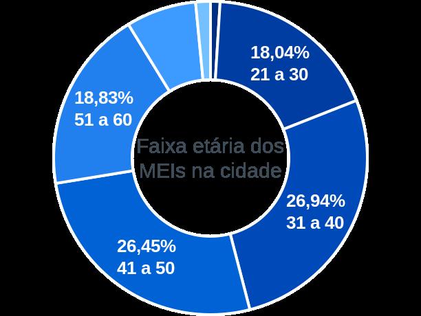 Faixa etária de MEIs na cidade de Santa Helena de Goiás