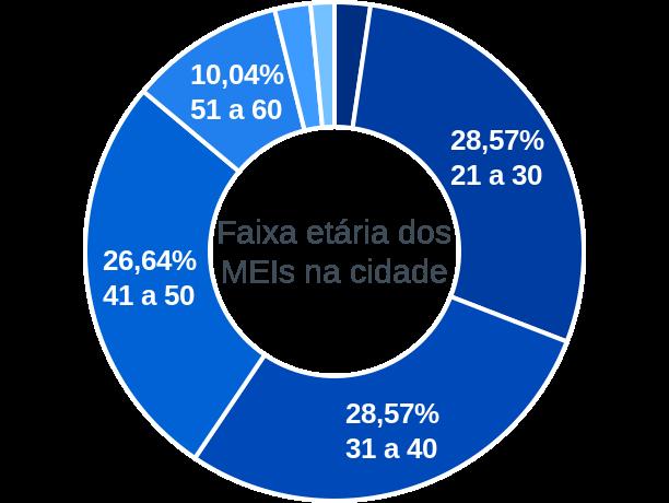 Faixa etária de MEIs na cidade de Santa Tereza de Goiás