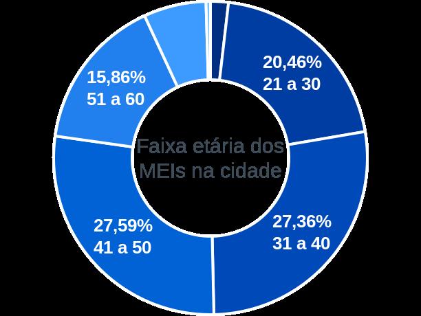 Faixa etária de MEIs na cidade de Santa Terezinha de Goiás