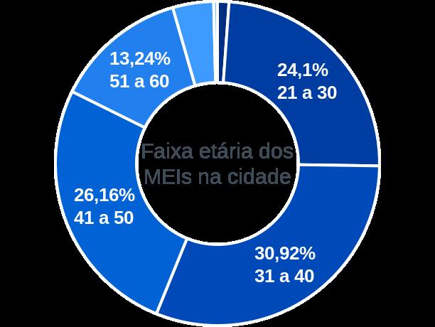 Faixa etária de MEIs na cidade de Santo Antônio do Descoberto