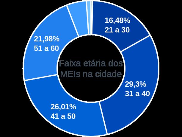 Faixa etária de MEIs na cidade de São Francisco de Goiás