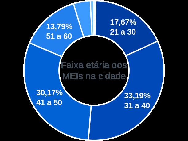 Faixa etária de MEIs na cidade de São Miguel do Passa Quatro