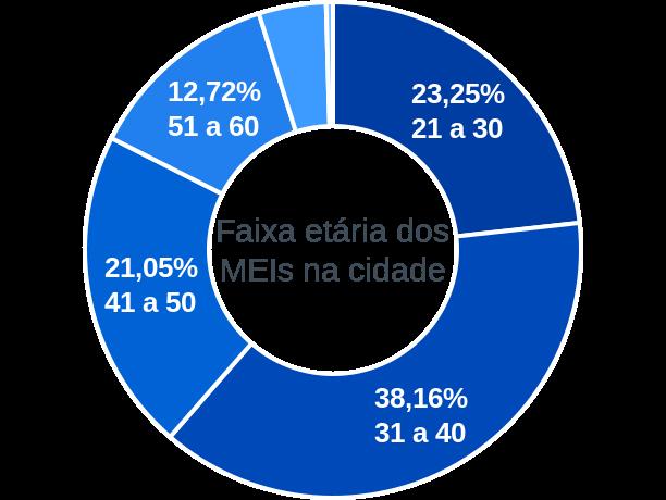 Faixa etária de MEIs na cidade de Taquaral de Goiás