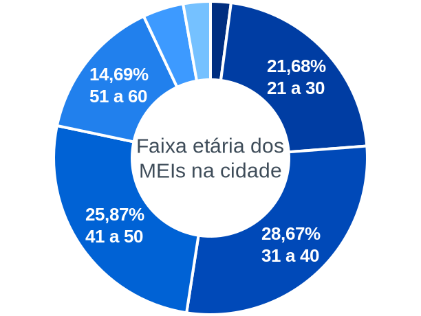 Faixa etária de MEIs na cidade de Teresina de Goiás