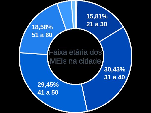 Faixa etária de MEIs na cidade de Terezópolis de Goiás
