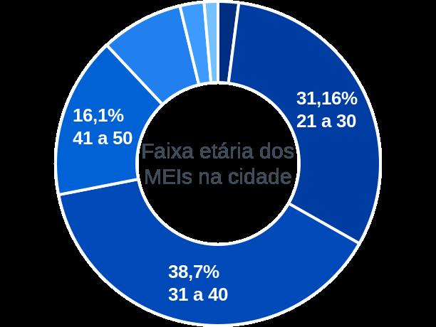 Faixa etária de MEIs na cidade de Alto Alegre do Pindaré