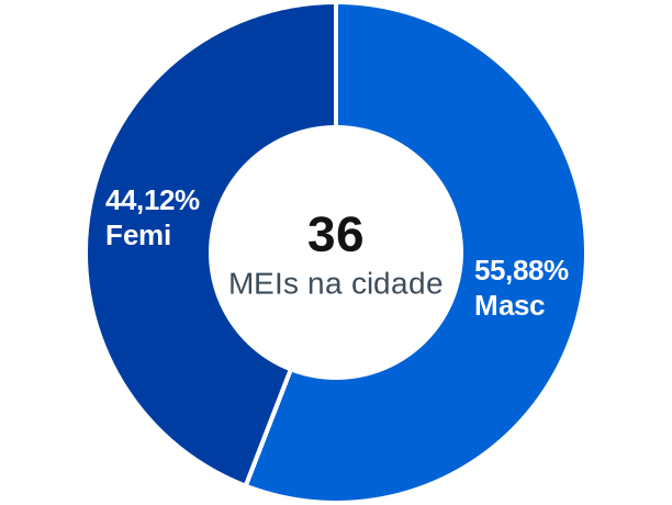Gênero de MEIs na cidade de Bernardo do Mearim