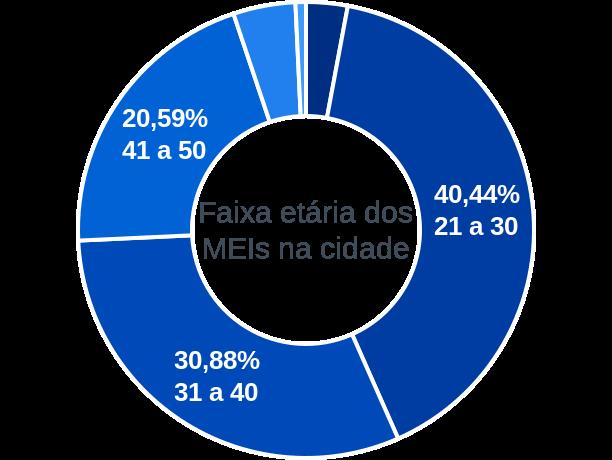 Faixa etária de MEIs na cidade de Centro do Guilherme