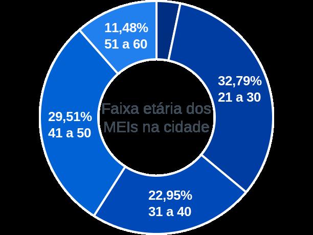 Faixa etária de MEIs na cidade de Feira Nova do Maranhão
