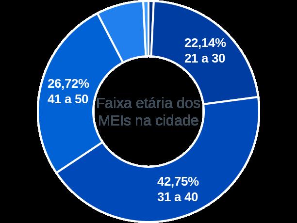 Faixa etária de MEIs na cidade de Formosa da Serra Negra