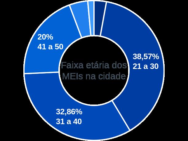 Faixa etária de MEIs na cidade de Junco do Maranhão