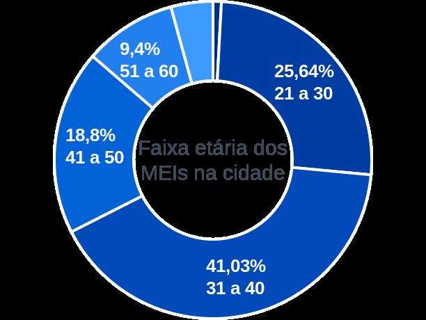 Faixa etária de MEIs na cidade de Paulino Neves