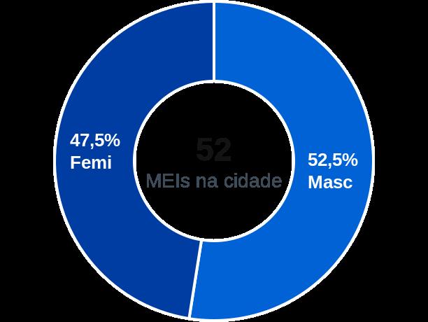 Gênero de MEIs na cidade de Santa Filomena do Maranhão