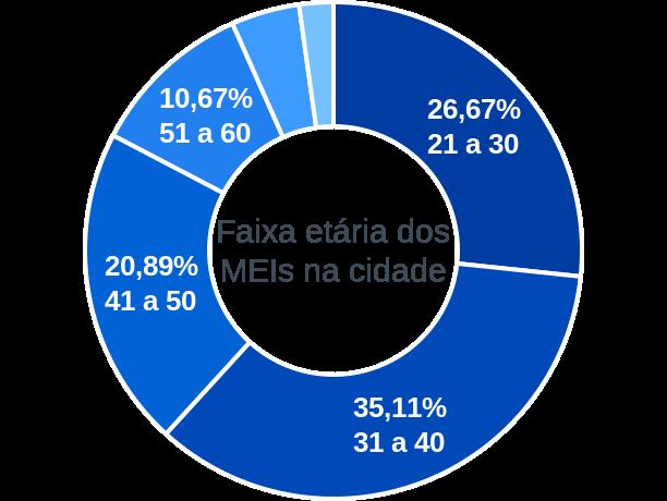 Faixa etária de MEIs na cidade de Santo Amaro do Maranhão