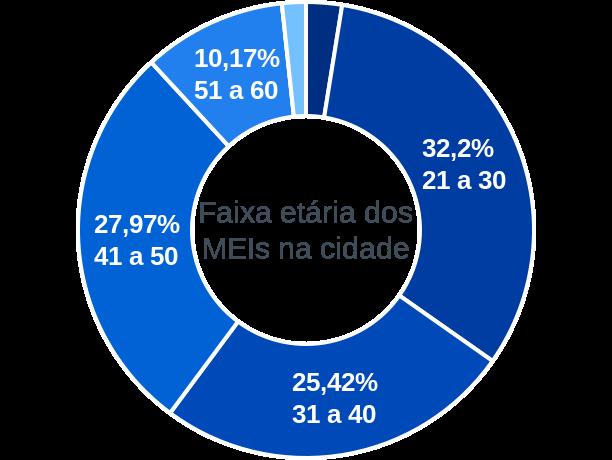 Faixa etária de MEIs na cidade de Santo Antônio dos Lopes