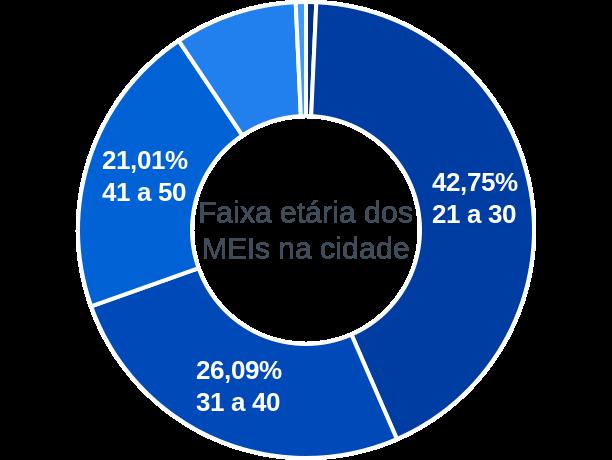 Faixa etária de MEIs na cidade de São João do Carú