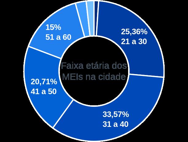 Faixa etária de MEIs na cidade de São Raimundo das Mangabeiras