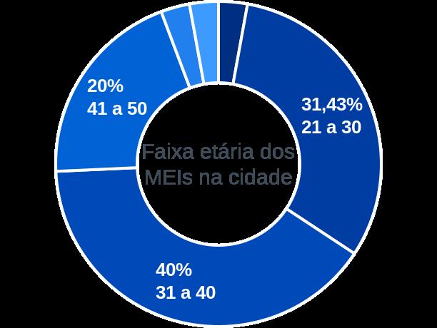 Faixa etária de MEIs na cidade de São Roberto