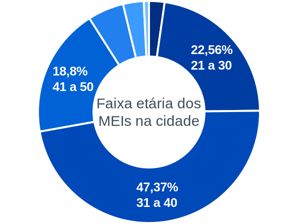 Faixa etária de MEIs na cidade de São Vicente Ferrer