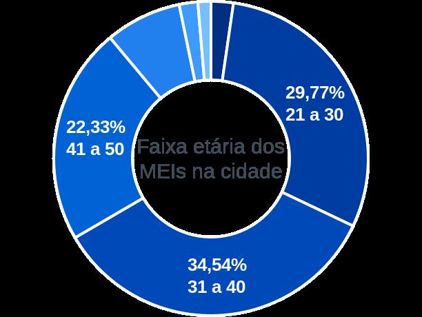 Faixa etária de MEIs na cidade de Viana