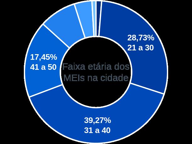 Faixa etária de MEIs na cidade de Vitória do Mearim