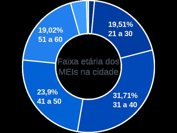 Faixa etária de MEIs na cidade de Alagoa