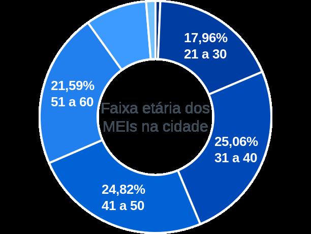 Faixa etária de MEIs na cidade de Além Paraíba