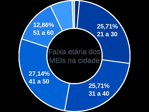 Faixa etária de MEIs na cidade de Amparo do Serra