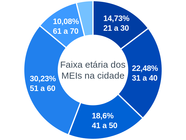 Faixa etária de MEIs na cidade de Araçaí
