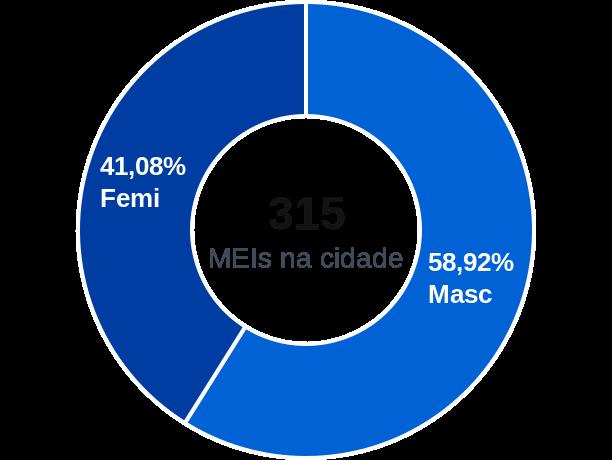 Gênero de MEIs na cidade de Belmiro Braga