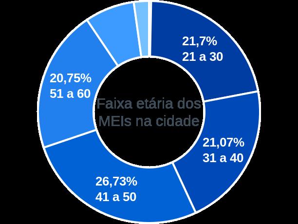 Faixa etária de MEIs na cidade de Belmiro Braga