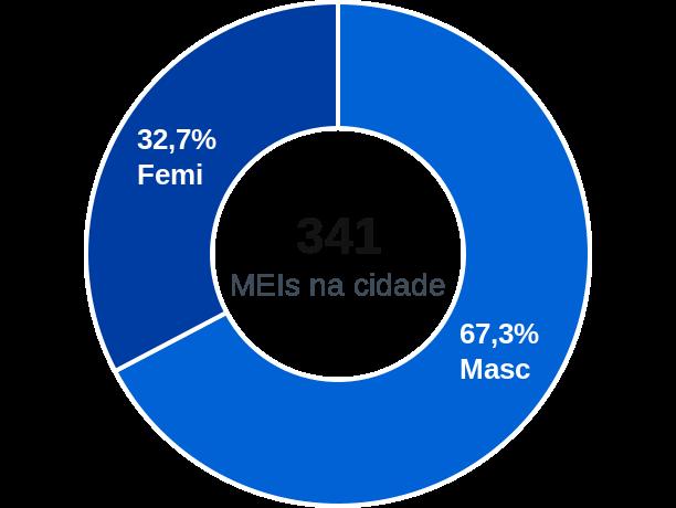Gênero de MEIs na cidade de Berilo