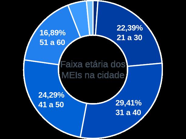 Faixa etária de MEIs na cidade de Bom Jardim de Minas