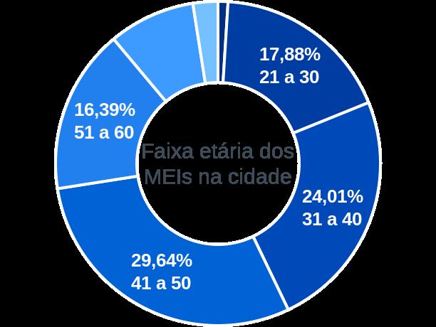 Faixa etária de MEIs na cidade de Cachoeira de Minas