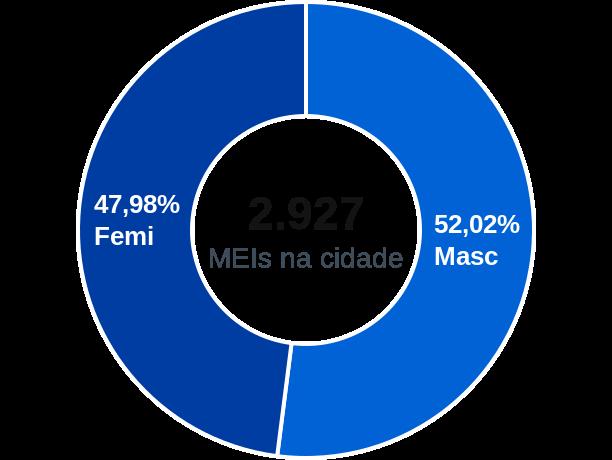 Gênero de MEIs na cidade de Campo Belo