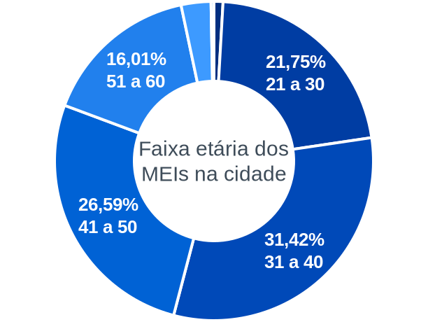 Faixa etária de MEIs na cidade de Capitão Andrade