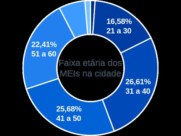 Faixa etária de MEIs na cidade de Carmo do Rio Claro