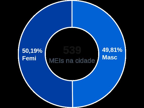 Gênero de MEIs na cidade de Coimbra