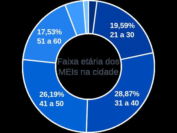 Faixa etária de MEIs na cidade de Conceição da Aparecida